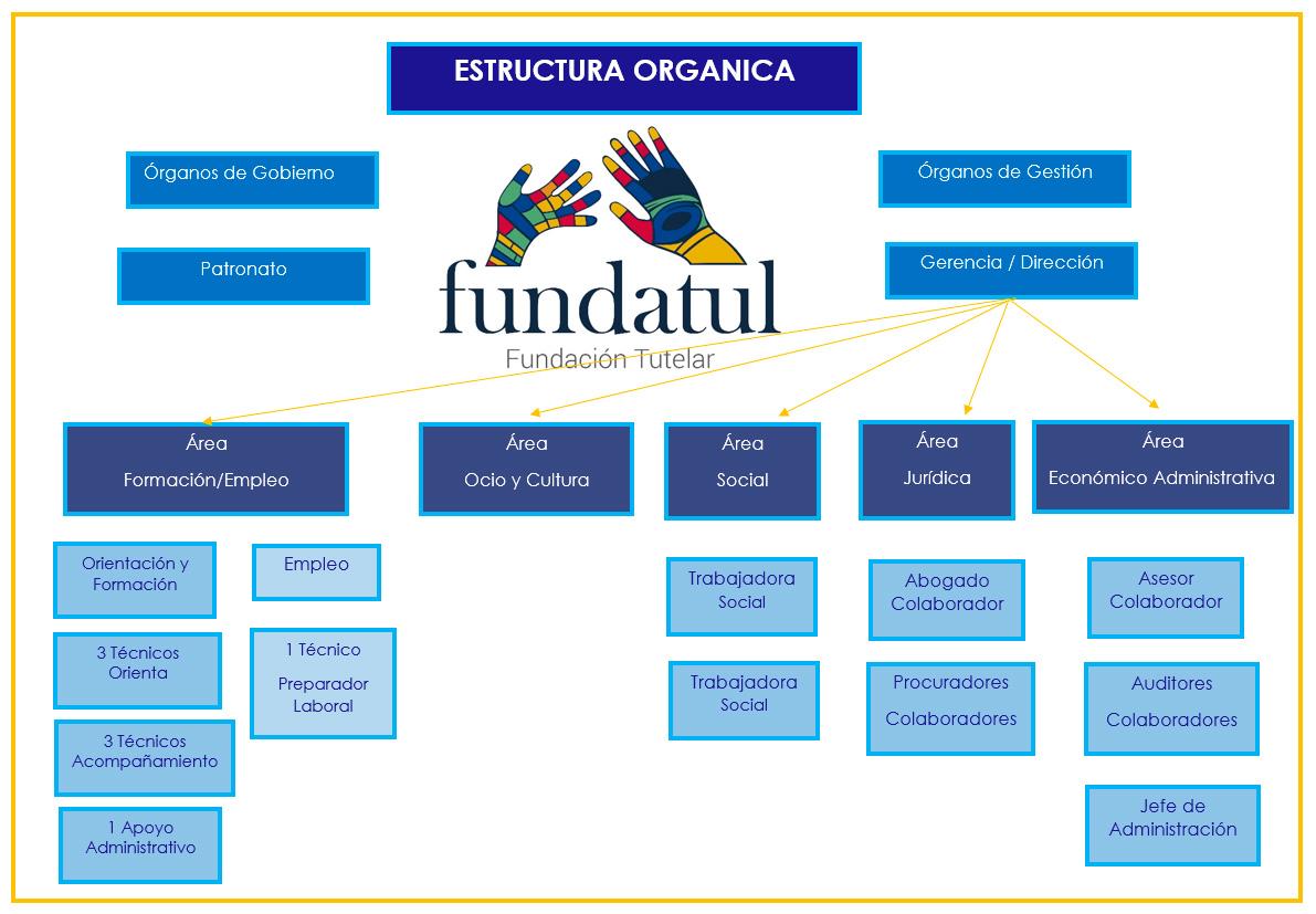 estructura-organica-fundatul